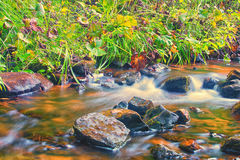 Flowing Water in the Meadow Royalty Free Stock Photography