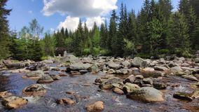 Flowing water in mountain river full of rocks. Jizera River, Czech Republic stock footage