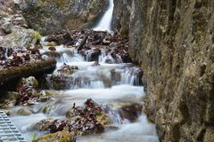 Flowing water of mountain stream. In Terchova, Slovakia royalty free stock photos