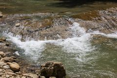 Flowing water in mountain swift river in the stones.  Royalty Free Stock Image