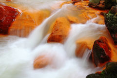 Flowing water in the river
