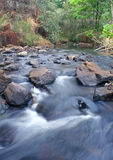 Flowing water. River in forest Royalty Free Stock Image