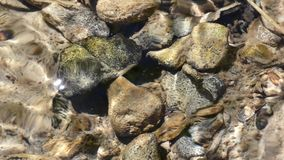 Flowing Water and Rocks in the Creek. Rocks under flowing stream water stock video