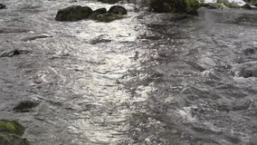Flowing water with sound from a small river in Sweden stock footage