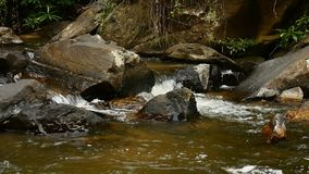 Flowing water on stone in nature relaxation concept stock footage