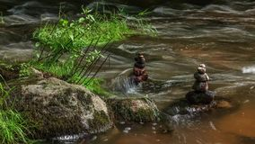 Flowing water through stones. Of small forest river, timelapse stock video footage