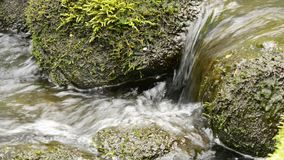 Flowing water and stones stock footage