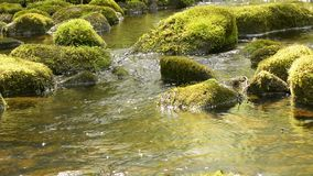 Flowing water and stones stock video footage