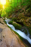 Flowing water stream in mountain forest Stock Images