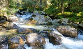 Flowing water in the stream Royalty Free Stock Image