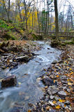 Flowing Water Upstream. At Tiffany Conservation Area Stock Image