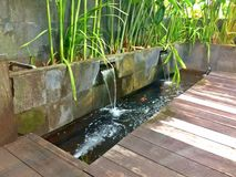 Flowing water in zen garden Stock Photos