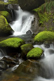 Flowing Waterfall. A peaceful waterfall among mossy rocks located in the wilderness of Oregon stock photography