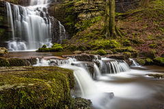 Flowing Waterfall Scaleber Force In The Yorkshire Dales National Park. Stock Photo