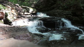 Flowing waters. Over top of falls in Ricketts Glen State Park in Pennsylvania stock video footage