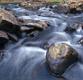 Flowing waters of River. Flowing waters of small forest river at Magoebaskloof hiking trail in South Africa Stock Photography