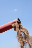 Flowing Wheat Grains Stock Images
