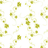 Flox seamless. Seamless flower pattern without background colour Stock Photography