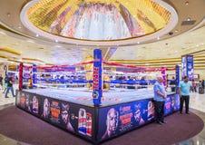 Бой Floyd Mayweather и Manny Pacquiao Стоковое Изображение RF