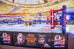 Floyd Mayweather and Manny Pacquiao fight Royalty Free Stock Photography