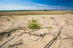 Fält för torkat land nära Royaltyfri Fotografi