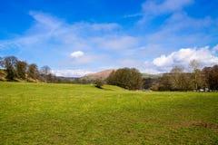 Fält i den Bolton abbotskloster Royaltyfria Foton