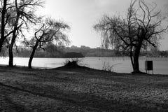 flußufer Stockbild