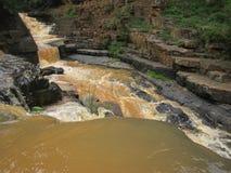 Fluência do rio Imagem de Stock