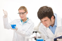 Flu virus experiment -  scientist in laboratory Royalty Free Stock Photos