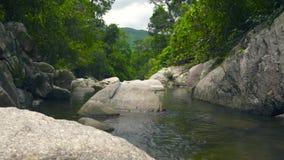 Flua a agua potável no rio que flui entre grandes pedras e pedregulhos Floresta tropical verde e rio rochoso na selva vídeos de arquivo