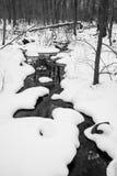 Flua o corredor através da neve em preto & em branco Fotografia de Stock Royalty Free