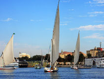 Fluca sur le fleuve de Nil Photos stock