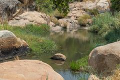 Fluent river with rocks and vegetation in Africa. Lubango. Angol. A Stock Photos