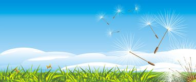 Fluff of dandelion on the landscape background Royalty Free Stock Photos