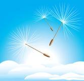 Fluff dandelion na cloudscape ilustracji