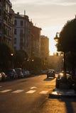 Fluff i semi o il polline nella città al tramonto Fotografia Stock Libera da Diritti