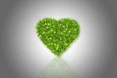 Fluffig grön hjärta Arkivfoton