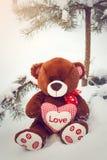 Fluffig gullig mjuk leksaknallebjörn med hjärtaförälskelse Royaltyfria Bilder