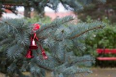 Fluffig julgran med röda klockor Filialer av blåa granwi Arkivbilder