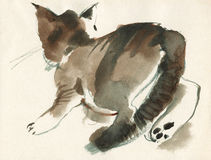 Fluffig rinnande kattungestående för vattenfärg Hand dragen flammig strimmig kattkatt i tappningstil royaltyfri illustrationer