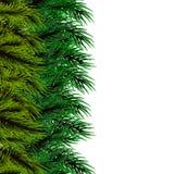 Fluffig trädmall för jul Arkivfoton
