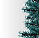 Fluffig trädmall för jul Arkivbild