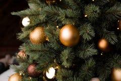 Fluffiga filialer av julgranen dekorerade med glass bollar Fotografering för Bildbyråer