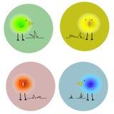 Fluffiga ljusa fåglar i cirklar Arkivfoto