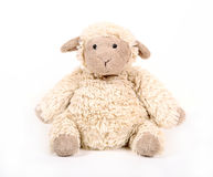 Fluffiga vita leksakfår Fotografering för Bildbyråer