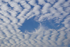 Fluffy Altocumulus Clouds. Cloudscape with altocumulus clouds.  Davie, Florida, United States Royalty Free Stock Photos