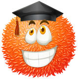 Fluffy ball with graduation cap Royalty Free Stock Photography