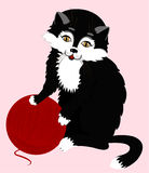 Fluffy black cat plays with yarn ball of red wood Royalty Free Stock Images