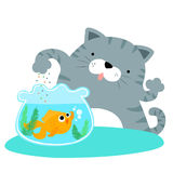 Fluffy cat feeding happy goldfish  Stock Images
