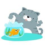 Fluffy cat feeding happy goldfish  Stock Images